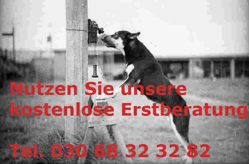 Internetmarketing-Berater